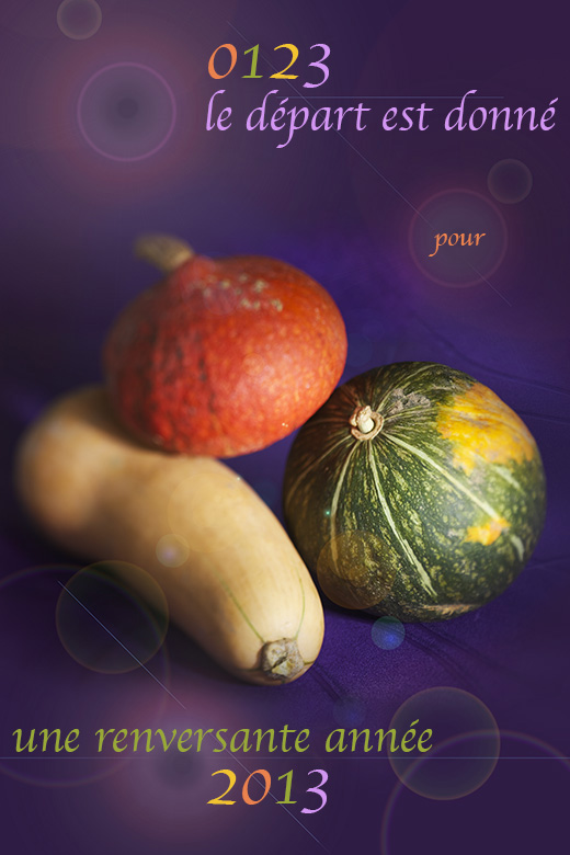 photographie culinaire courge