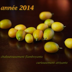 Création culinaire 2014, voeux fusion