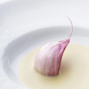 Sauce crémeuse à l'ail et au thym